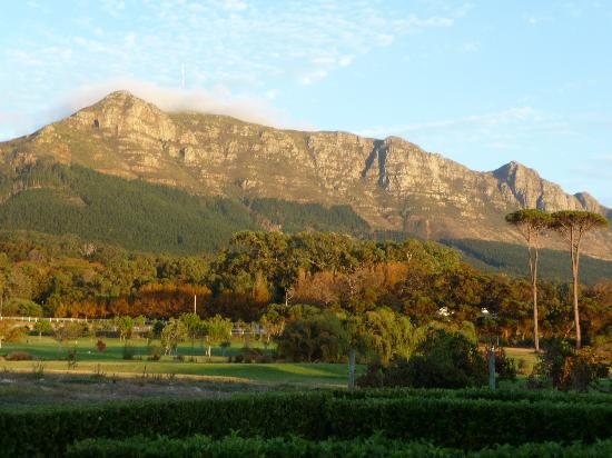 Steenberg Hotel: View from Room