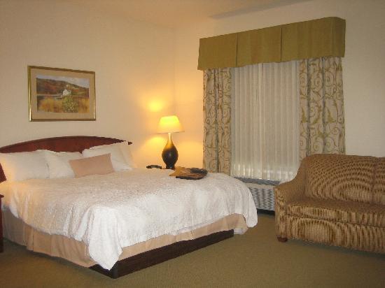 Hampton Inn & Suites Binghamton / Vestal: Bed and Couch
