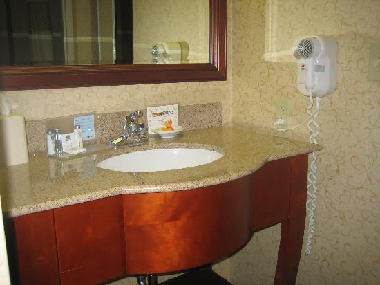 Hampton Inn & Suites Binghamton / Vestal: Bathroom Vanity