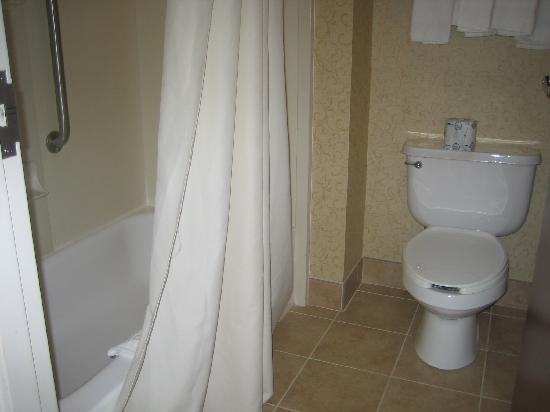 Hampton Inn & Suites Binghamton / Vestal: Tub/Shower and Toilet