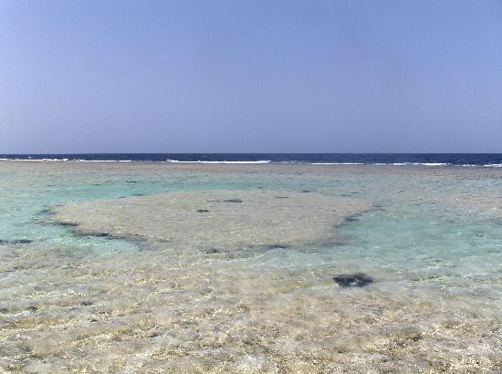 Paradise Beach Resort : il mare antistante l'hotel