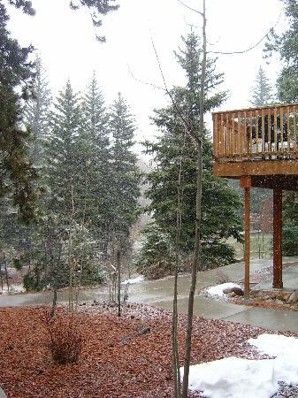 Estes Park Condos: View from our door
