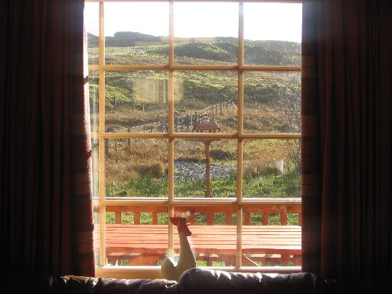 Wildside Highland Lodges: View from the window