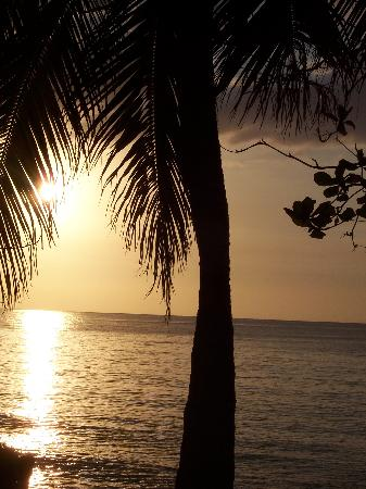 Shields Negril Villas: beautiful sunsets