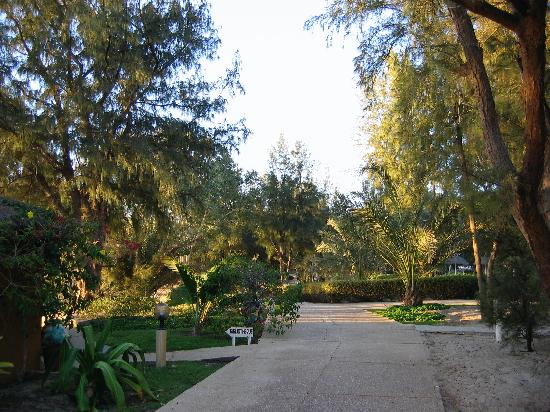 Hôtel Diamarek : allée