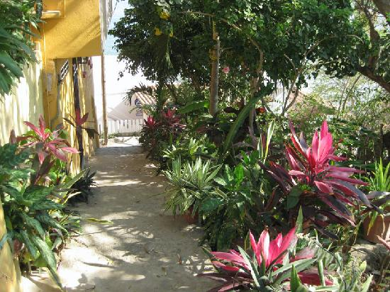 Casa Adriana: walkway to beach