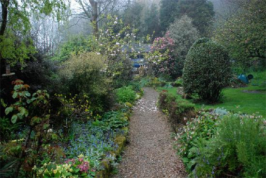 Cove Cottage: The Garden