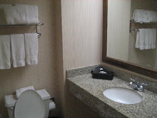 Embassy Suites by Hilton Atlanta - Airport: Bathroom
