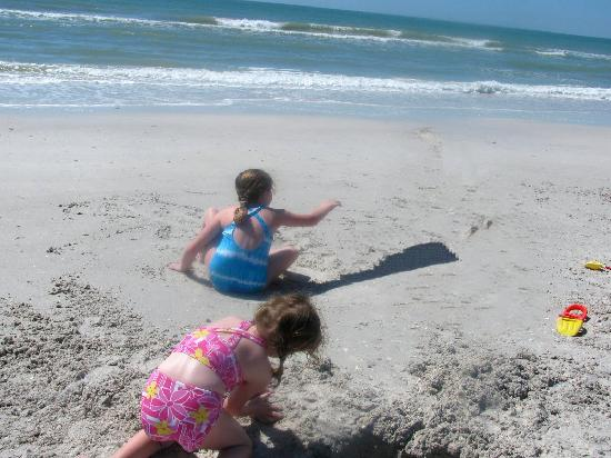 Caladesi Island State Park: This pic shows nice sand quality, cleanliness of beach