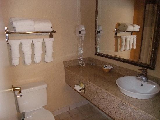 Country Inn & Suites by Radisson, Atlanta Airport North, GA: Clean bathroom
