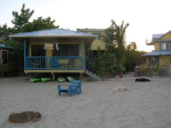 "Maya Breeze Inn: beach ""cabana"""