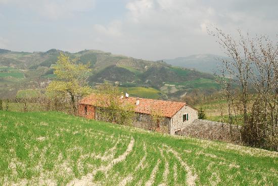 L'Agriturismo La Cerreta: farmhouse from above