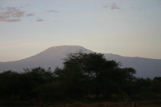 Sentrim Amboseli: view from the patio