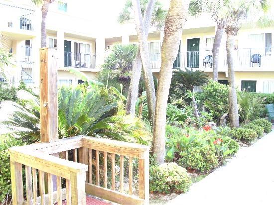 garden picture of flamingo motel panama city beach. Black Bedroom Furniture Sets. Home Design Ideas