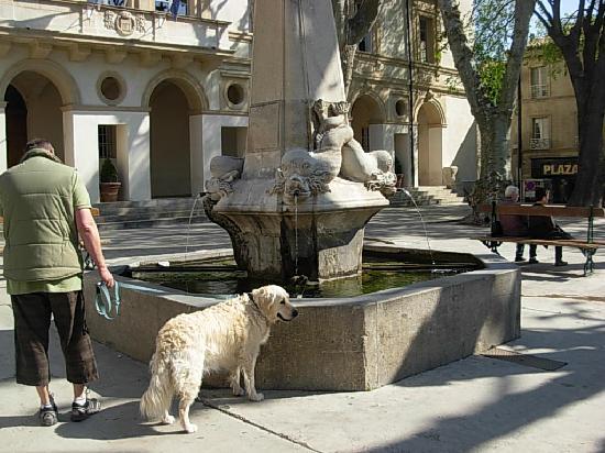 Saint-Rémy-de-Provence, France : Fontaine Nostradamus