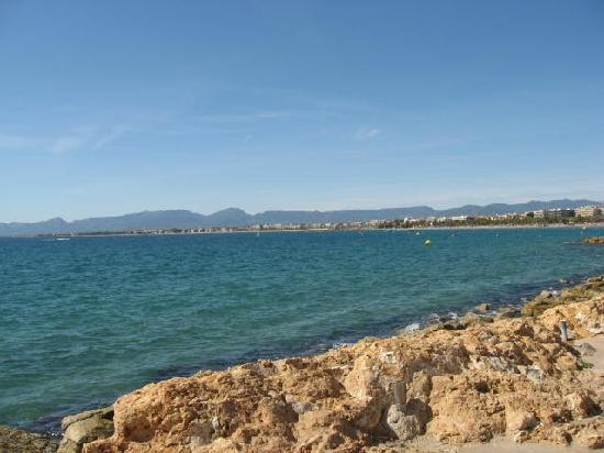 Aparthotel Best Da Vinci Royal : The sea 100 metres away