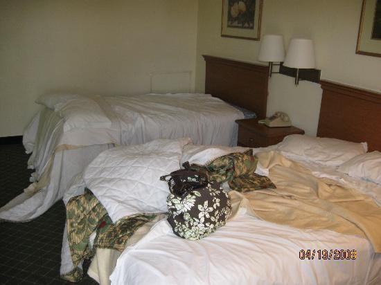 Economy Inn: beds