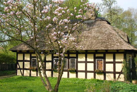 Hotel Zollhaus: Thatched building in the garden