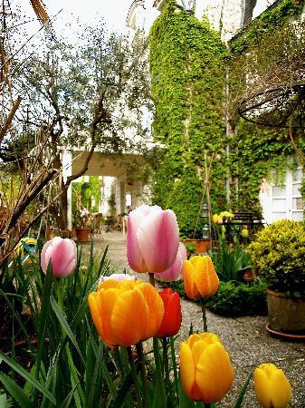 Hotel Diderot: Tulipanes en el Jardín