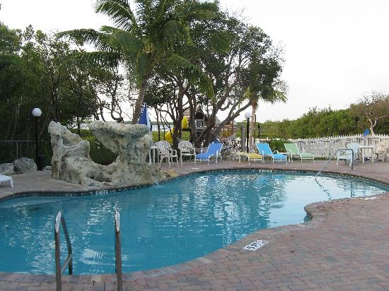 Ocean View Inn and Sports Pub: Pool with a view!