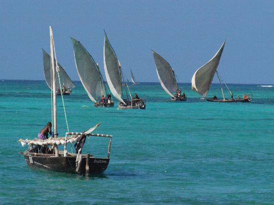 Nungwi Village Beach Resort: Dhow Fishing Fleet