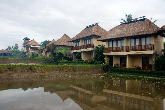 Biyukukung Suites and Spa: view of the rooms/villas from the rice field