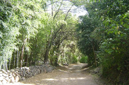Camino del Huaico-Traslasierrra-Córdoba