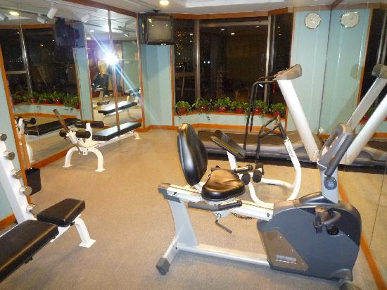 Stanford Hillview Hotel : gym