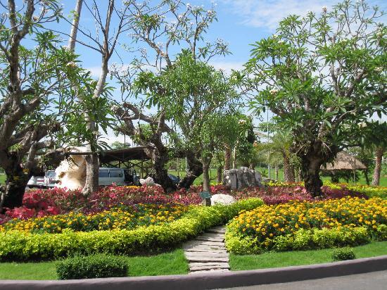 Horizon Village & Resort: Beauty of the garden