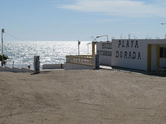 Playa Dorada Hotel: Hotel and Sea