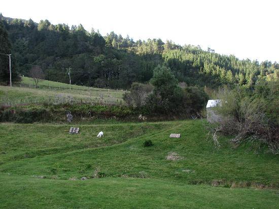Sherrington Grange : Farm and Surrounding Area