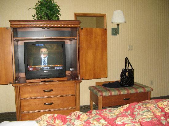 Best Western Braddock Inn: TV