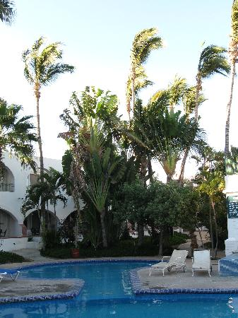 Hotel Mar de Cortez: Greenery with small pool