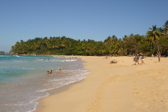 Mel Tours: Playa Grande 3