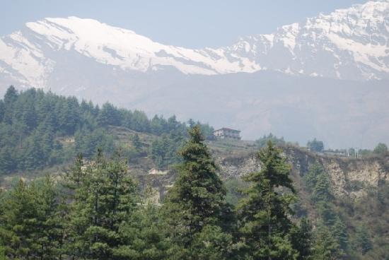 Lodge Thasang Village : Hotel on the hillside - what a view