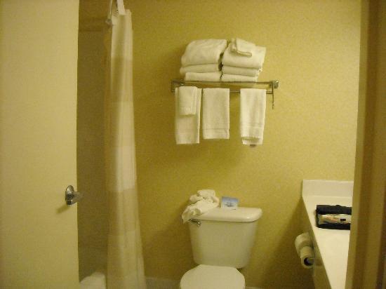 Fairfield Inn & Suites Minneapolis Burnsville: bathroom