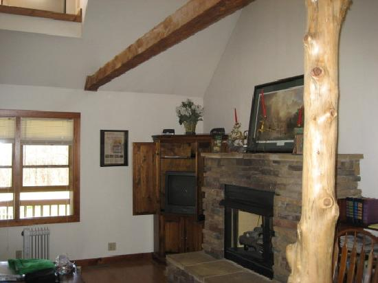 Fair Winds Cabins: Great fire place!