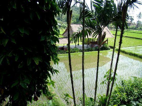 사렌 인다 호텔 사진
