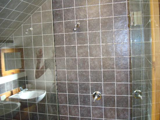 Wanaka Homestead Lodge and Cottages: double shower!