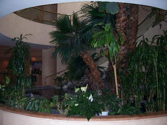 Indian Wells Resort Hotel: Waterfall Grotto in Lobby