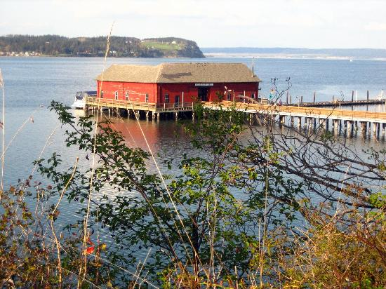 Garden Isle Guest Cottages: Coupeville dock from path to town.