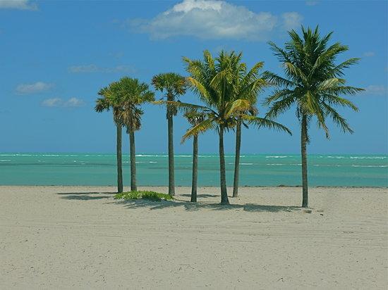 Key Biscayne, FL: Key Biscane