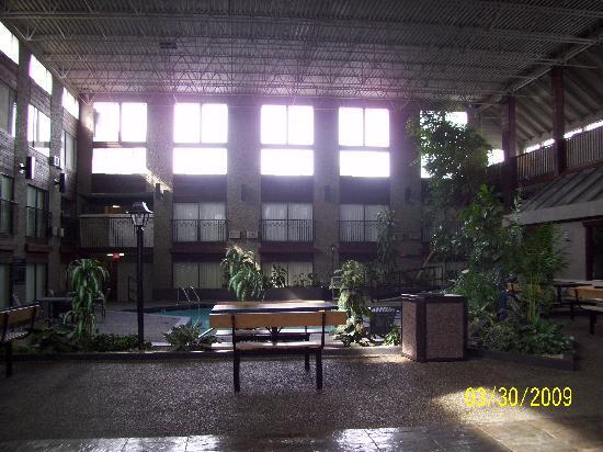 Sandman Hotel Edmonton West: Innenbereich mit zwei Pools