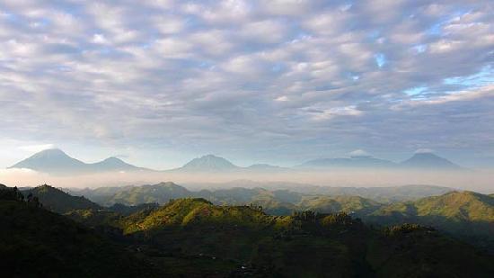 Nkuringo Bwindi Gorilla Lodge: The Virunga volcanoes at dawn.