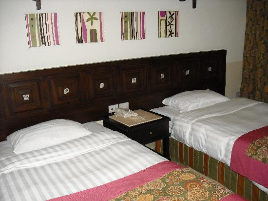 Tirana Aqua Park Resort: vue d'une chambre
