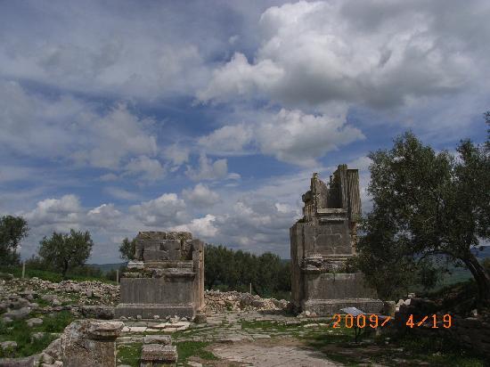 Dougga: セプティミウス・セヴェルスの凱旋門跡