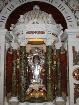 Chiesa del Gesu: Chiesa del Gesù - reliquia di San Francesco Saverio