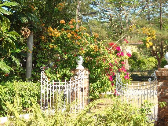 Carousel Villa : gate to entrance
