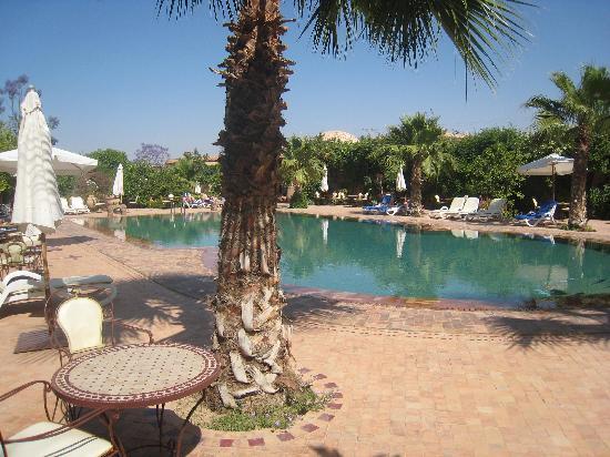 Hotel Dar Zitoune: Une piscine magnifique