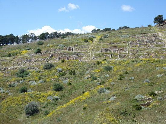 Santa Flavia, Itália: Solunto - la pianta ortogonale della cittadella